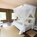 Ngama Tented Safari Lodge near Kruger National Park Special Deal Hoedspruit