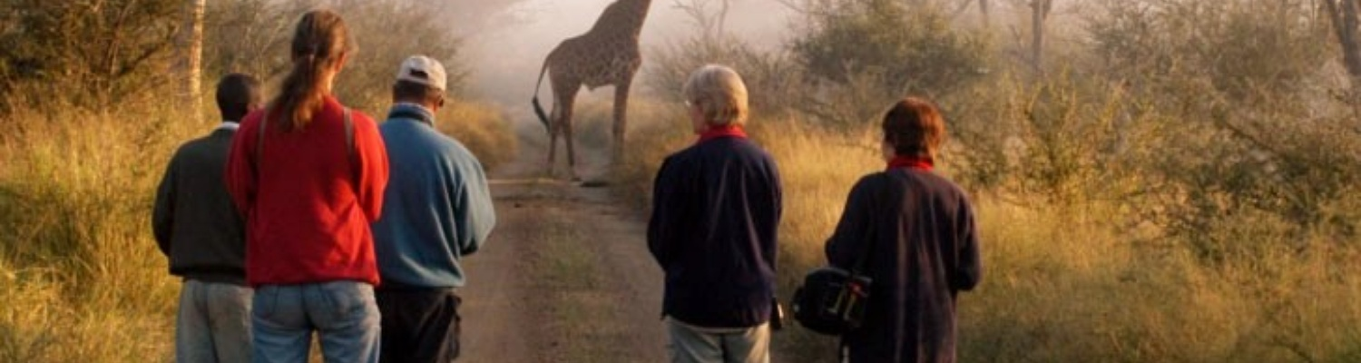 Viewing Giraffe on a guided nature walk Ngama Tented Safari Lodge